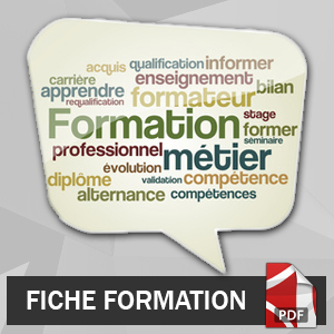 destenouest-formation-management-formation-tuteur